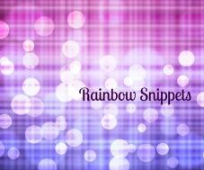 1RainbowSnippetsBiFlag
