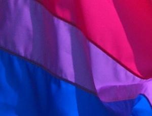 bi-pride-flag